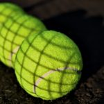 Regulation Tennis Ball